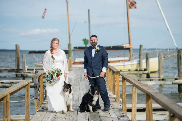Bride and groom posing on dock with dogs